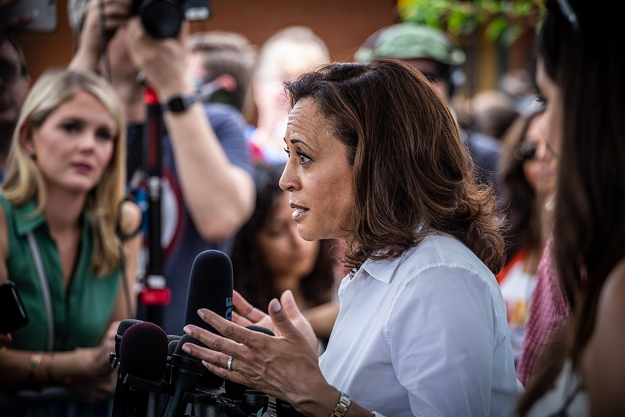 Harris Blames Higher Black COVID-19 Death Rate on Economic, Healthcare Disparity